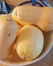 Butternut Squash Recipies